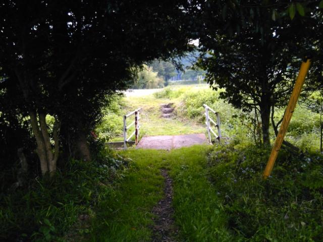 秘密のトンネル?